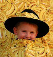 phoca_thumb_l_bananenfoto03