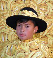 phoca_thumb_l_bananenfoto45